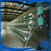 China alibaba chicken cage system for sale