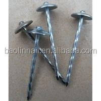 Common nail with high quality and competitive price