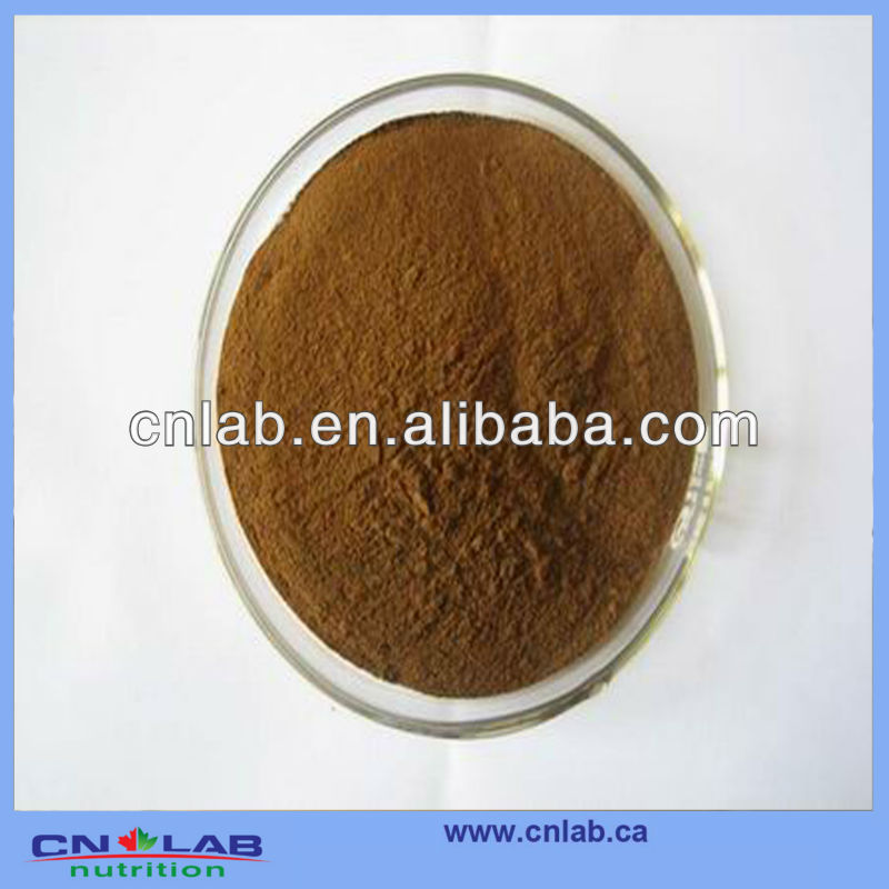 GMP/ISO9001 Manufacturer Supply Organic Yucca Extract Saponin