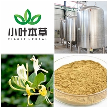 Green coffee bean extract powder exract factory supply nature honey suchle flowers