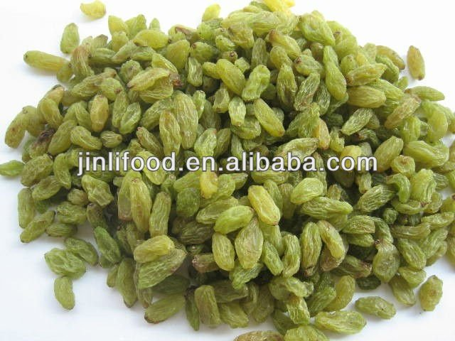95%green raisin with seedless good price xinjiang crop