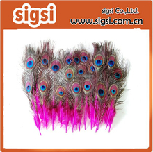 Beautiful 25-30cm pink dyed artificial peacock feather