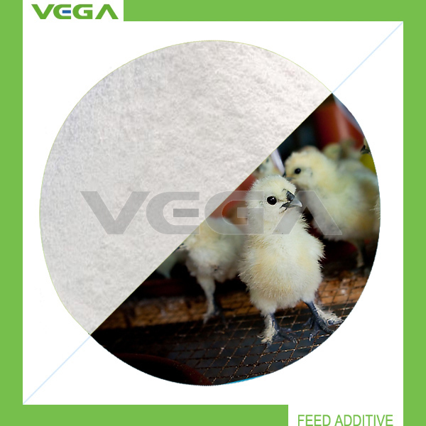 chicken feed High Quality Raw Material for Animal China L-threonine 98.5%