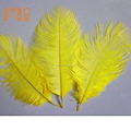 Wholesale colorful ostrich feathers for wedding party