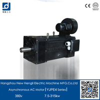 NHL efficiency IE4 3 phase 300kw 3 phase electric asynchronous motor