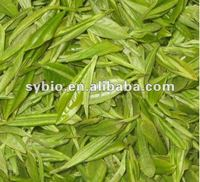 Green Tea P.E. CAS NO. 84650-60-2 Tea polyphenols