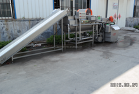 vegetable washing machine/Salad vegetable processing line for lettuce/potato/carrot/onion