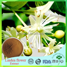 Hot sales product flower of Miquel Linden extract, flower of Miquel Linden powder manufactures