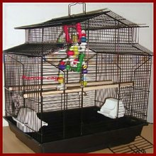 parrot bird cage