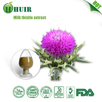 Natural Plant Extract Milk Thistle 80% silymarin, Milk Thistle Extract