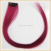Free sample full head Clip on human hair extension in fashin colors