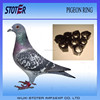 2015 hot sale pigeon ring bird ring with tracking chip