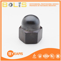 din 1587 bolt & nut protection cap nuts