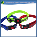 Fashional and charming New Style pet accessories Nylon Dog Collar