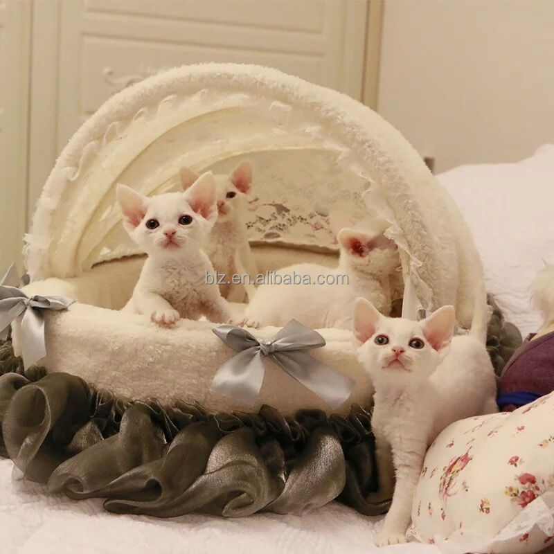 2018 New Type princess Cradle luxury dog cat bed Lace pet bed