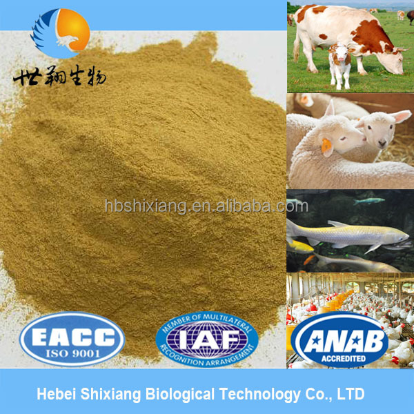 high quality poultry feed premix
