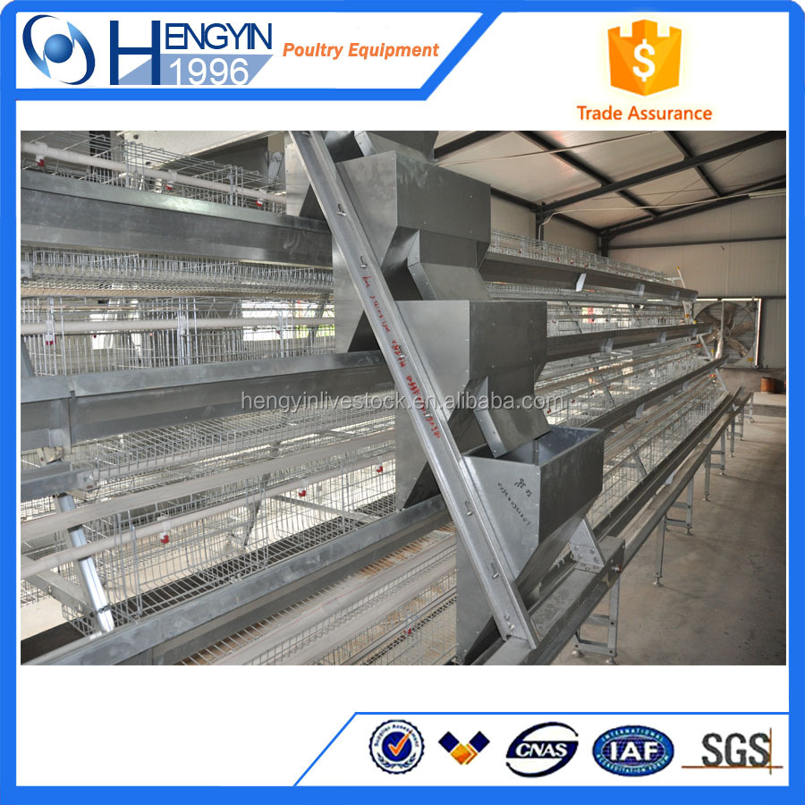 full automatic chicken layer cage/chicken battery cage/cage for laying hens