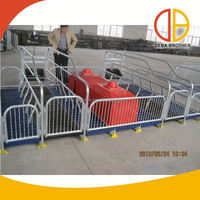 New product insemination pig pen