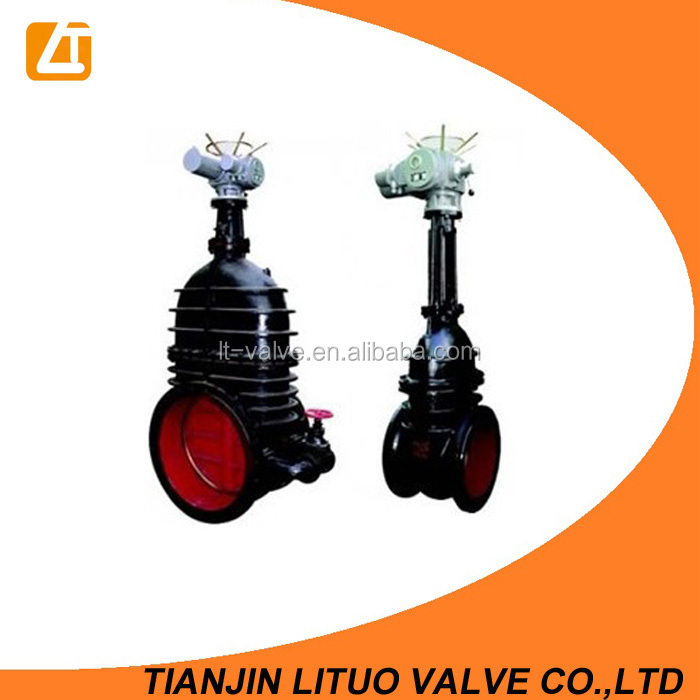 Gost Russia Standard Cast Iron Non-rising Stem Gate Valve DN50-600mm