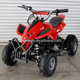 Chinese Cheap 1000W Kids Quad Bike Battery Mini ATV with Electric Start