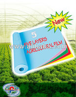 MULTI LAYERS GREENHOUSE FILM