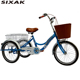 New 20 inch elderly vegetable basket adult tricycle