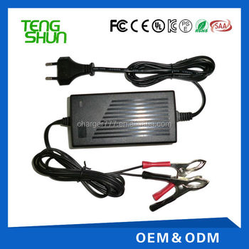 TengShun high quality 24v2a automatic lead acid battery charger for electric balance scooter