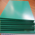 Pp green blue plastic multi color lmpraboard akylux danpla twin wall corfluted correx coroplast hollow corrugated sheet