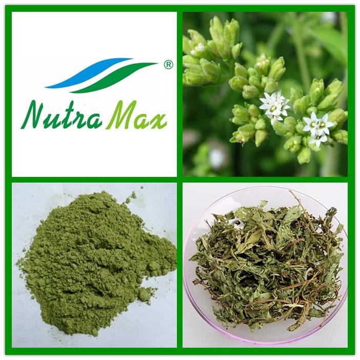 stevia extract 1