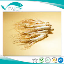 Factory Supply Ginseng Root Extract, Best Sells Product Ginseng Extract, Ginseng Powder in US stock with Fast Delivery