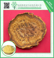 100% Natural Scutellaria Baicalensis Extract Baicalin, radix scutellariae extract