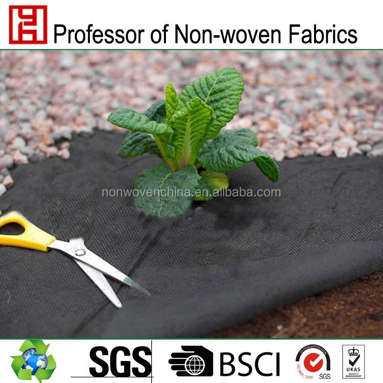 ground cover weed control fabrics agriculture