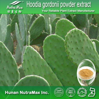 GMP Factory Sale- Hoodia gordonii powder extract,hoodia cactus extract 4:1,10:1,20:1 TLC