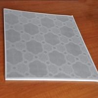 supply exposed insulated pvc gypsum ceiling tiles