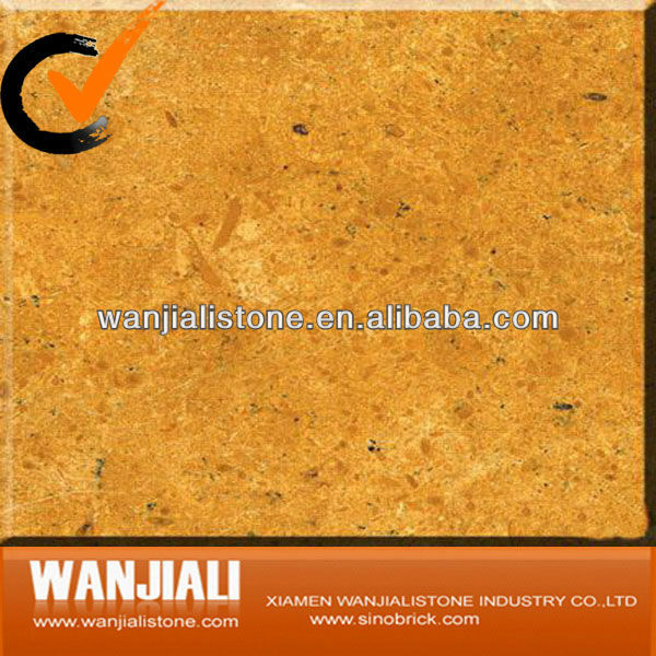Imported Indus Golden Marble