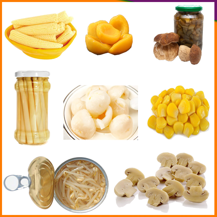 Low Price Canned Whole mushroom in Brine in can canned vegetable