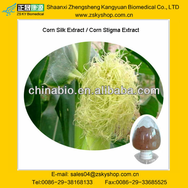 100% Natural Beta-Sitosterol 5%/Corn Silk Extract/CAS NO.:83-46-5
