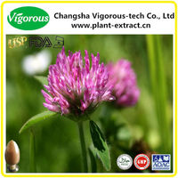 Red clover leaves extract isoflavone powder