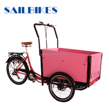 fashion front 2 wheels pedal assist battery operated motorized cargo trike
