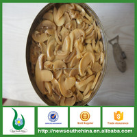 Indian canned food markets canned mushroom in brine 400g 425g 800g 2840g