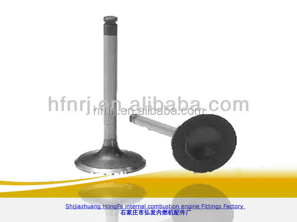 combustible bmw auto engine valve for sale