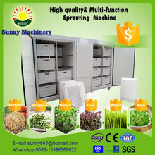 China Automatic bean sprouts machine, silkworm bean, black bean sprouts making machine