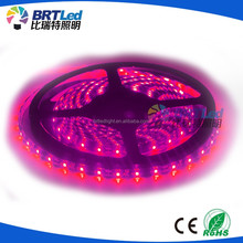 5050 RGB LED Strip 5M 300 Leds SMD Flash Flex light Waterproof 12V wireless led strip light