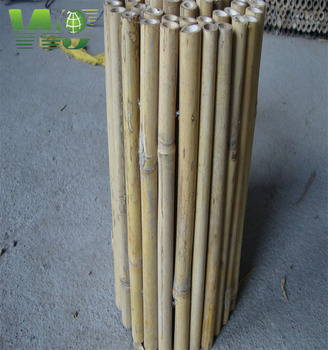 natural eco-friendly bamboo fence