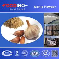 Certificated HALAL HACCP Dehydrated Dried Garlic Powder