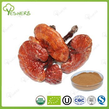 2017 new arrivals mushrooms reishi powders extract ganoderma for health