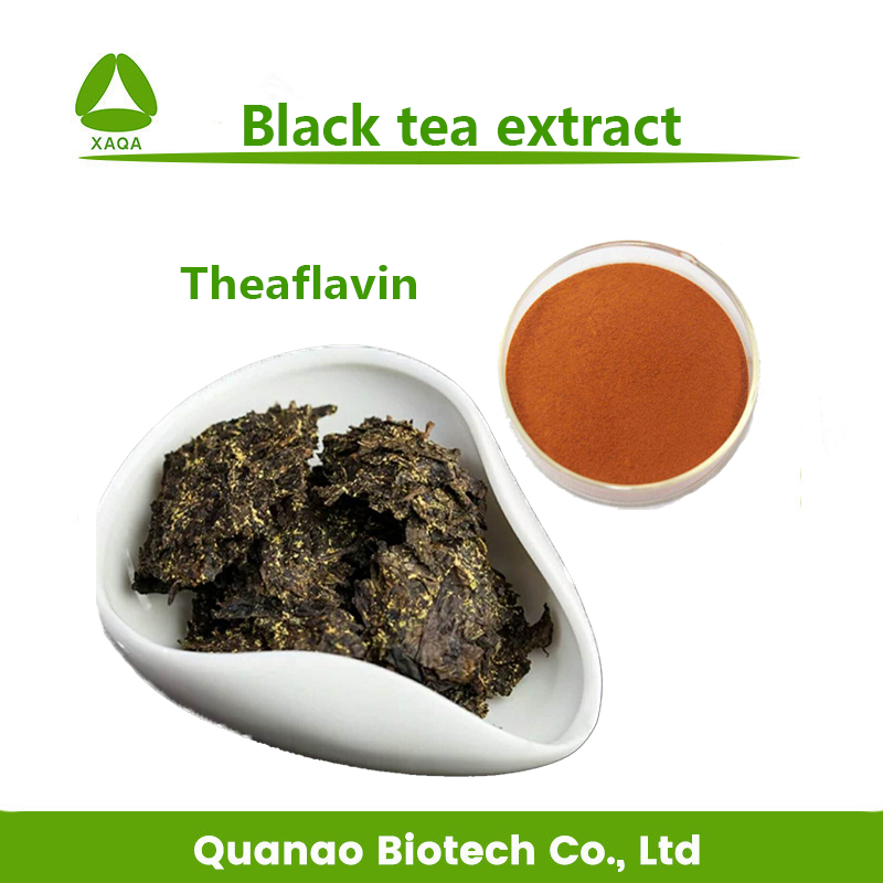 Quick weight Loss Black tea extract Theaflavin 10% 30% Caffeine / tea polyphenols 60% 80%