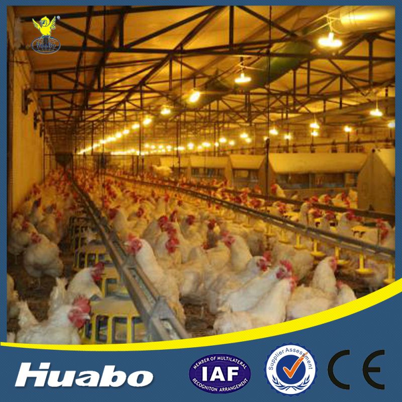 Poultry Farm Machinery Manual Egg Laying Nest Hen Equipment
