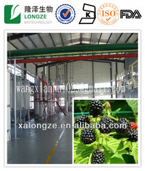 Extract of crown of blackberry 100% Natural plant extract blackberry