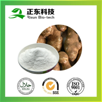 New Real 100% Natural Inulin 90%-95% White Fine Powder for Skin Beauty